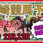 【 地方競馬予想 】 川崎競馬予想 11/9日11R、12R最後に買い目も発表しています! #川崎競馬,#地方競馬予想,#地方競馬,#競馬,#競馬予想,#JRA,#ギャンブル,#予想,