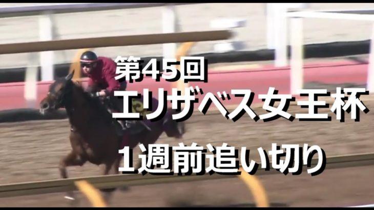 【1週前追い切り】2020 第45回 エリザベス女王杯 調教【競馬】
