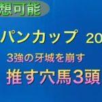 【競馬予想】 ジャパンカップ 2020 穴馬考察 準備予想