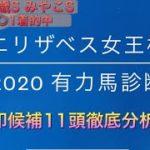 【競馬予想】 エリザベス女王杯 2020 全頭診断 事前予想