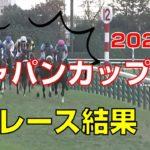 【競馬】ジャパンカップ2020:レース結果(武豊騎手はワールドプレミアに騎乗)