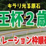 2020 京王杯2歳ステークス シミュレーション 枠順確定【競馬予想】