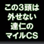【競馬予想】マイルチャンピオンシップ2020 この3頭は外せないっしょ!!