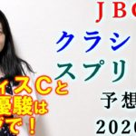 【競馬】JBCクラシック JBCスプリント 2020 予想 (JBCレディスC 3連単99.1倍的中!) ヨーコヨソー