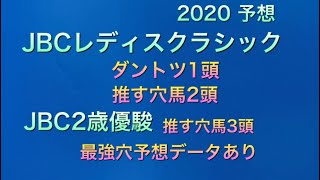 【競馬予想】 地方交流重賞 JBCレディスクラシック JBC2歳優駿 2020 予想