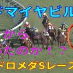 【競馬】アドマイヤビルゴと武豊騎手 アンドロメダSレース結果 武豊騎手との無敗のコンビ