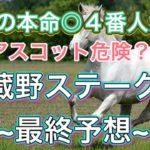 武蔵野S2020(最終予想&印紹介)競馬予想 今年は3歳馬に注目!! 初心者にもわかりやすいように解説しています