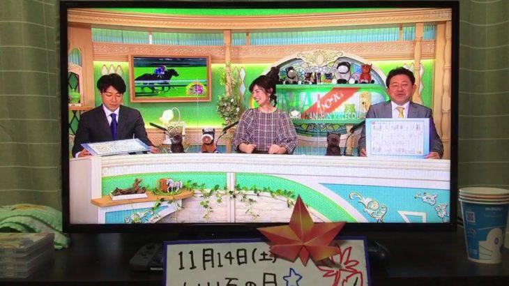 ジャニグチの競馬実況ライブ【武蔵野ステークス・デイリー2歳ステークス】『もしたら』シリーズ