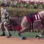 【競馬】リフレイムの京王杯2歳SとアーモンドアイJC出走の可能性