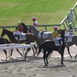 【競馬】ゴール後に落馬してカラ馬になった馬を、北村宏司騎手が捕まえる!!