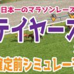 2020 ステイヤーズステークス シミュレーション【競馬予想】枠順確定前