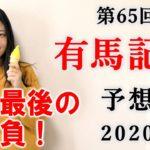 【競馬】有馬記念 2020 予想 (阪神カップ、中山大障害はブログで!) ヨーコヨソー