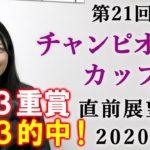 【競馬】チャンピオンズカップ 2020 直前展望 (出走全頭分析はブログで!) ヨーコヨソー