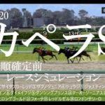 2020 カペラステークス 競馬予想 レースシミュレーション(枠順確定前)