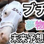 阪神ジュベナイズフィリーズ2020 競馬予想ではないけど、ソダシ、私の夢をブチかましてよ