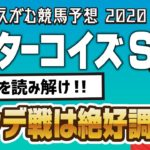 【競馬予想】 2020 ターコイズS ハンデを読み解け!!