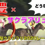 【地方競馬】名古屋グランプリ2020レース結果:武豊騎手はサクラアリュールに騎乗:1番人気はマスターフェンサー ・2番人気は ロードゴラッソ【名古屋競馬場】