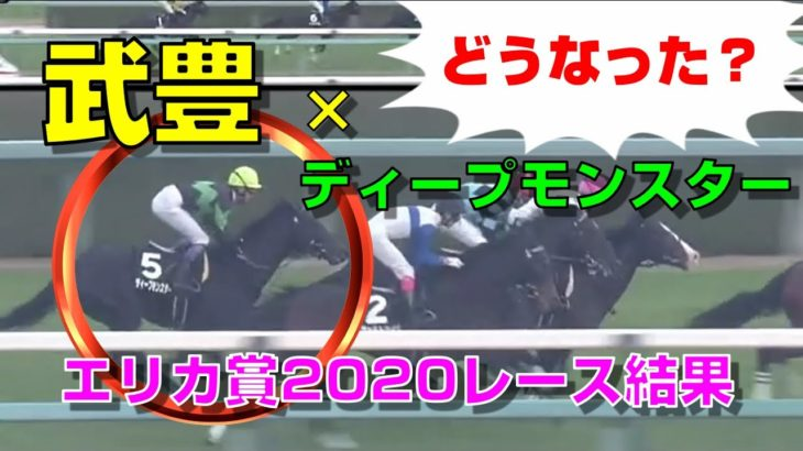 【競馬】エリカ賞2020レース結果:ディープモンスター×武豊で出走(1人気はディープモンスター・2人気はヴェルトハイム