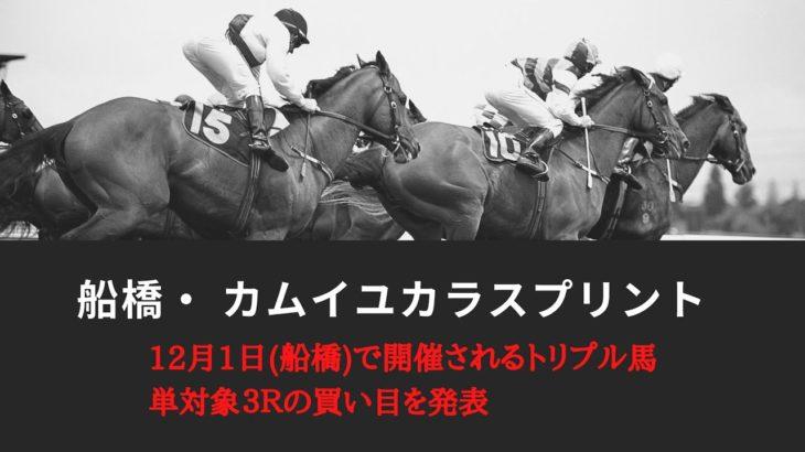 カムイユカラスプリント2020予想┃船橋競馬・12月1日トリプル馬単対象3レースをガチで当てる!