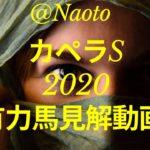 【カペラステークス2020予想】有力馬見解【Mの法則による競馬予想】