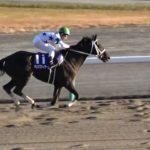【競馬】第21回チャンピオンズカップGⅠ ウィニングラン 現地映像 チュウワウィザード