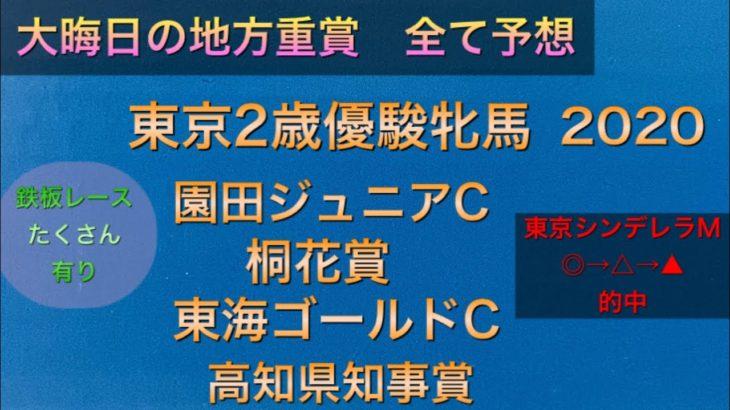 【競馬予想】 東京2歳優駿牝馬 園田ジュニアカップ 桐花賞 東海ゴールドカップ 高知県知事賞 2020 予想