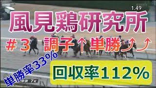 【競馬 #3】単勝的中率33%!馬券的中率56%で勝利する動画