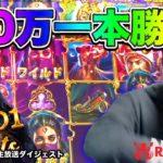🔥【50万円勝負】赤虎の良いところを全て引き出したいの巻!(前半)【オンラインカジノ】【Slotty Vegas kaekae】【Play'n Go】【Red Tiger】