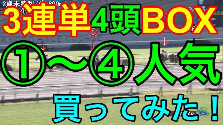 【競馬検証】5万投資!①~④人気馬の3連単4頭BOX!12R分買ってみた!