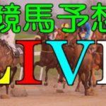 【競馬LIVE予想】12/8日分 リアルライブ予想!No1 発走前に公開する!偽り無い!3連単(連単)予想!