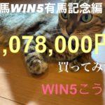 競馬WIN5有馬記念編¥1,078,000買ってみた