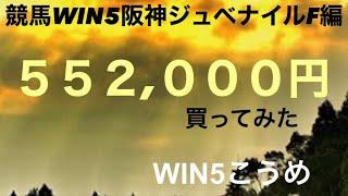 競馬WIN5阪神ジュベナイルF編¥552,000買ってみた