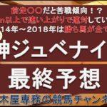【競馬予想】阪神ジュベナイルフィリーズ2020 最終予想 前走○○だと要注意!? 人気通りに決まるか、それとも…