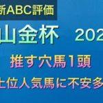 【競馬予想】 中山金杯 2021 全頭診断 事前予想