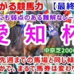 【競馬】愛知杯2021 枠順確定後最終考察動画 全頭考察【競馬の専門学校】