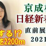 【競馬】京成杯 日経新春杯 2021 直前展望(全頭分析はブログで!) ヨーコヨソー