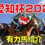 【競馬】愛知杯2021有力馬紹介(武豊騎手はレッドアステルに騎乗)中京競馬場