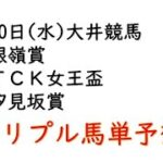 【大井競馬トリプル馬単予想】銀嶺賞・TCK女王盃・汐見坂賞【2021年1月20日】