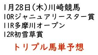 【川崎競馬トリプル馬単予想】ジャニュアリースター賞・多摩川オープン・初雪草賞【2021年1月28日】