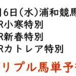 【浦和競馬トリプル馬単予想】小寒特別・新春特別・カトレア特別【2021年1月6日】