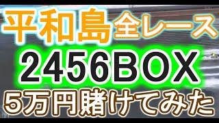 【競艇・ボートレース】平和島で全レース「2456BOX」5万円賭けてみた!!