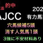 【競馬予想】 アメリカジョッキークラブカップ AJCC 2021 有力馬診断 事前予想