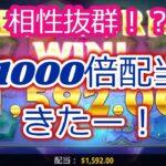 【オンラインカジノ】1000倍勝利きた!フリースピン買うならこのスロット!【Buffalo King