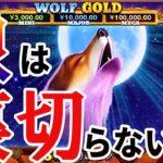 #176【オンラインカジノ|スロット】狼は裏切らない|WOLF GOLD