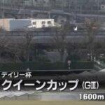 【競馬】2021 デイリー杯クイーンカップG3  東京芝1600m