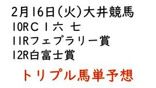 【大井競馬トリプル馬単予想】フェブラリー賞・白富士賞【2021年2月16日】