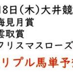 【大井競馬トリプル馬単予想】梅見月賞・雲取賞・クリスマスローズ賞【2021年2月18日】
