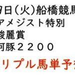 【船橋競馬トリプル馬単予想】アメジスト特別・駿麗賞・河豚2200【2021年2月9日】