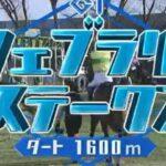 【競馬】フェブラリーステークス G1   2021 2/21