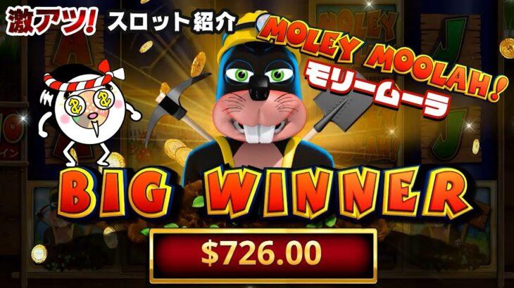 【オンラインカジノ】「MOLEY MOOLAH!」キモカワモグラで賞金獲得250倍!?【激アツスロキャンプVol.19】